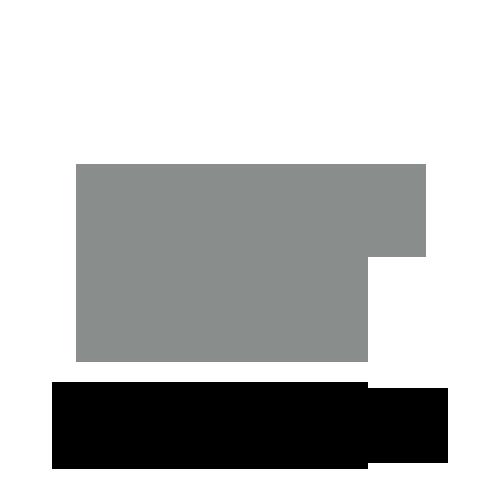 Logo voor EliteStyle